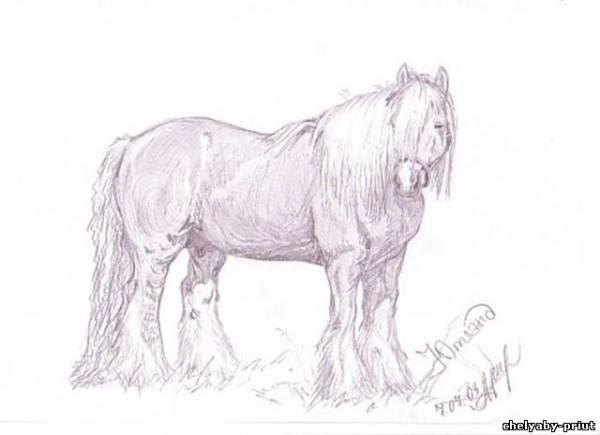 Horse pegas 106