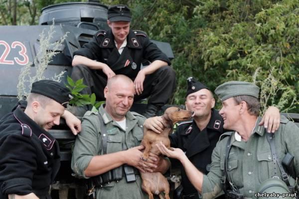 Челябинские приюты животных